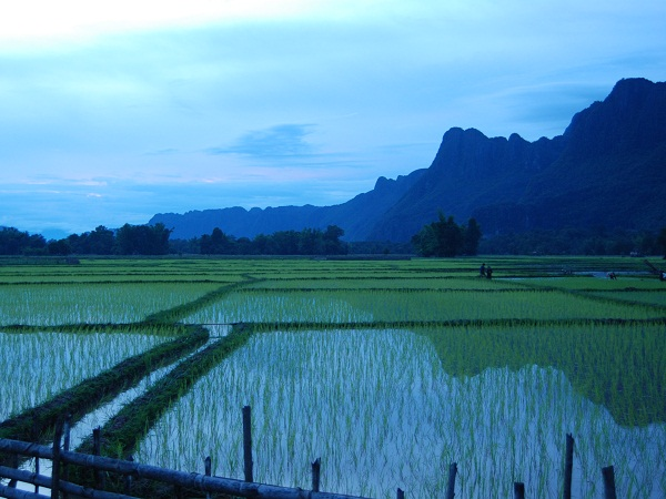 Photo of the Week (01 July 2012) - Peaks and Paddies, Southern Laos