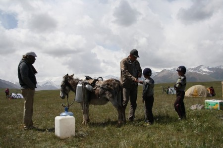 Donkey carries water in mountains of Kyrgyzstan