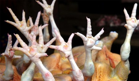 farmers markets - hanoi vietnam - chicken feet
