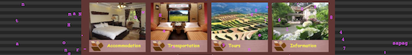 Screenshot of a hotel website with bad distractions