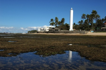 Tamar Project Station and lighthouse of Praia do Forte, Brazil