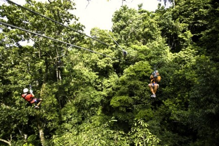 Zip line at the Rainforest Adventures Atlantic Park in Costa Rica