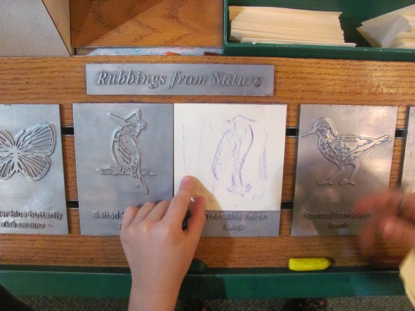 Rohan's rubbings at Indiana Dunes National Lakeshore