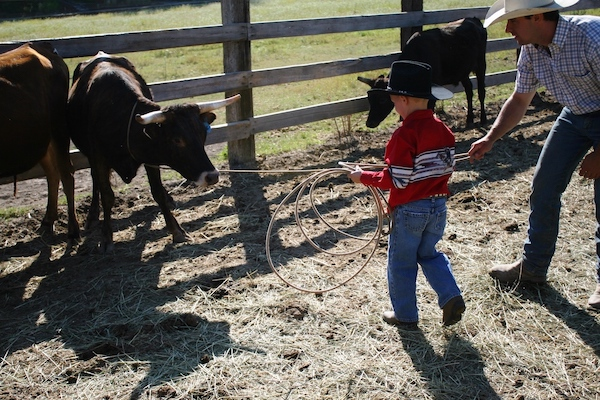 family travel and dude ranches: kid roping a steer